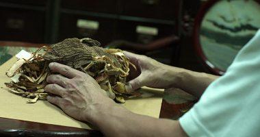 Thuốc đông y chữa bệnh thấp khớp gia truyền 200 năm